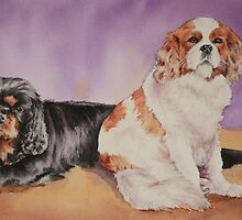 Jack & Bella, the King Charles pair. by Pauline Winwood
