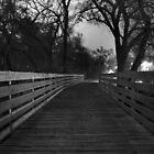 Bridge - black and white   by nkorompilas