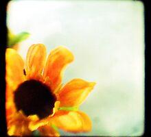 Sunflower II TTV  by madsuncaribou
