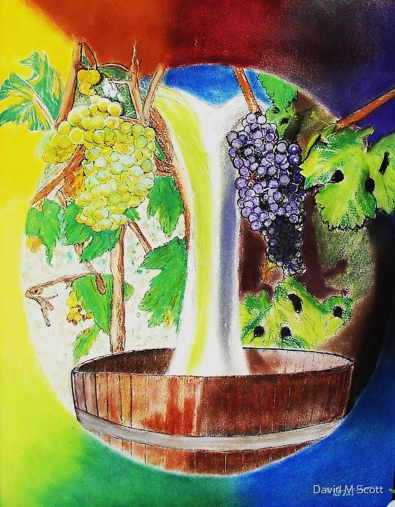Vineyard Falls by David M Scott