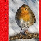 Christmas Card by Chris Clark