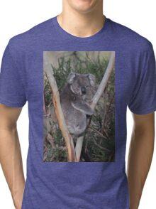 Koala from Onkaparinga NP of Sth Aust. 2 Tri-blend T-Shirt