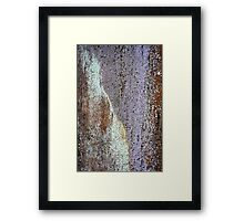 I'm OLD and PRETTY... Framed Print