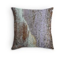 I'm OLD and PRETTY... Throw Pillow