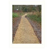 Angels of the YELLOW BRICK ROAD........(Poem attached) Art Print