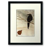 Raven Framed Print
