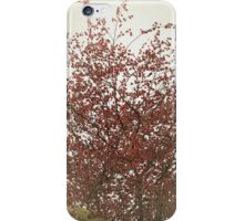 Up high above the tree top iPhone Case/Skin