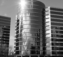 Oracle Campus in Black and White. Redwood Shores, California 2010 by Igor Pozdnyakov