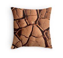 Mud Patterns Throw Pillow