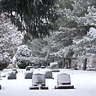 Snow covered Graves by Samantha  Lauren