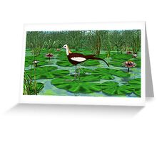 Pheasant Tailed Jacana Greeting Card