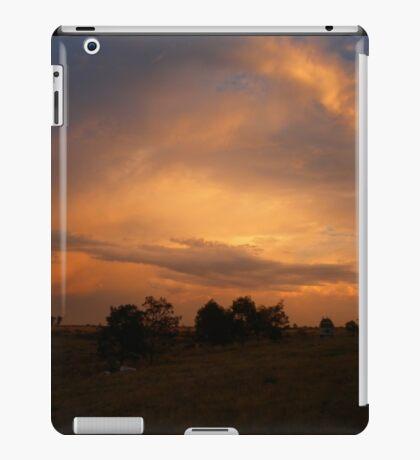 The Edge of Suburbia iPad Case/Skin