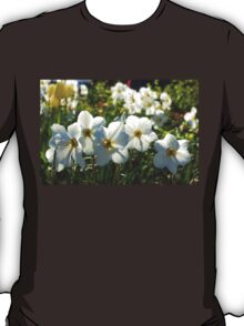 Poet Daffodils Dreams - Impressions Of Spring T-Shirt