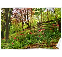Fresh and Colorful Hillside - Impressions Of Spring Poster