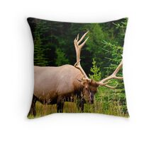 Wildlife Along Icefields Parkway Throw Pillow