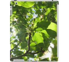 Silhouetted Nature  iPad Case/Skin