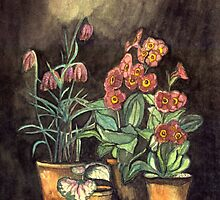 STILL LIFE WITH PRIMROSES AND CHESS FLOWERS IN POTS by RubaiDesign