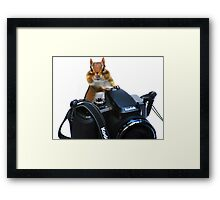 The Photographer's Assistant Framed Print