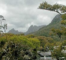 Cradle Mountain from lake Lilla,Tasmania, Australia. by kaysharp