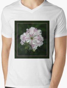 Dianthus Droplets Mens V-Neck T-Shirt