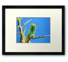 ©NS Clean Sky IA. Framed Print