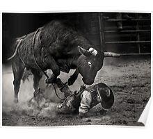 Noooo Bull Poster