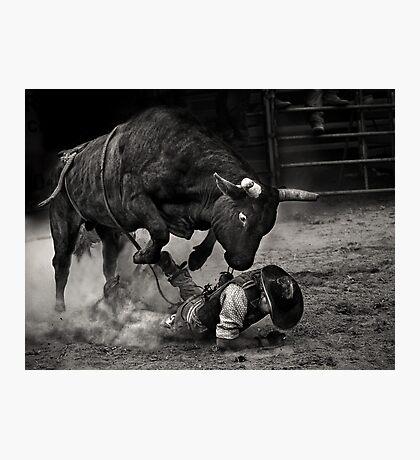 Noooo Bull Photographic Print
