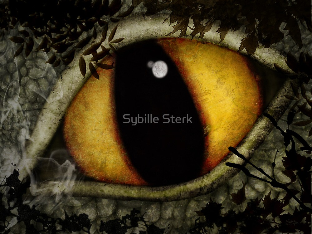 Woods Dragon by Sybille Sterk