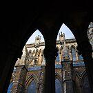 Lincoln cathedral  by Brett Still
