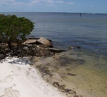 Ponce De Leon Beach by tapiona