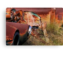 Multi Colored Rust   ( BoneYard Series ) Canvas Print