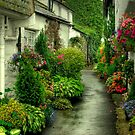 A Hawkshead Alley by VoluntaryRanger