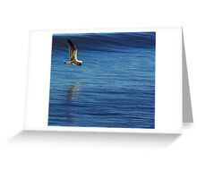 In Flight Greeting Card