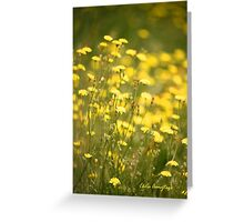 Pretty as can be ...  Greeting Card