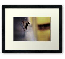 The Hopper Framed Print
