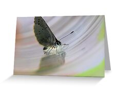 Butterfly Glass Greeting Card