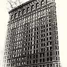 Vintage Flatiron Building by Jeff Blanchard