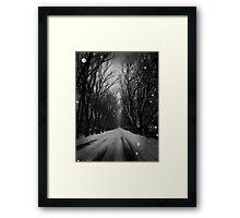 Winter Tree Tunnel Framed Print
