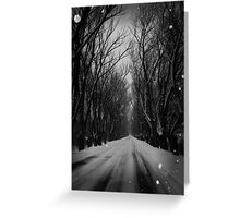 Winter Tree Tunnel Greeting Card