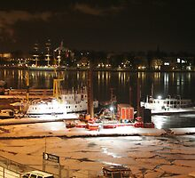 Night harbor (Stockholm, Sweden) by Antanas