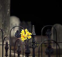 Toujours Souvenu by Marion  Cullen