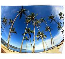 "Palm Trees and a Big Sky ""Tropical Palms"" Poster"