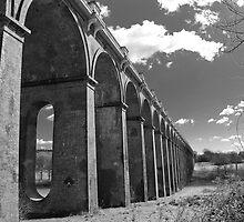 Balcombe Viaduct by Eddie Howland