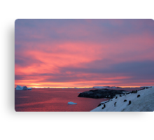 Antarctic Sunset Canvas Print