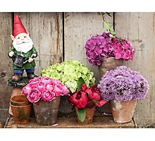 Still Life with Flowers & a Gnome Photographic Print