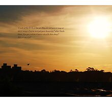 Matthew 6:26 Photographic Print