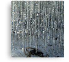 Ice cage Canvas Print