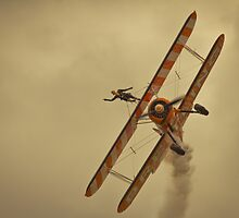 Brietling wing walkers by gymstedhead