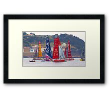 volvo ocean race. teams Framed Print