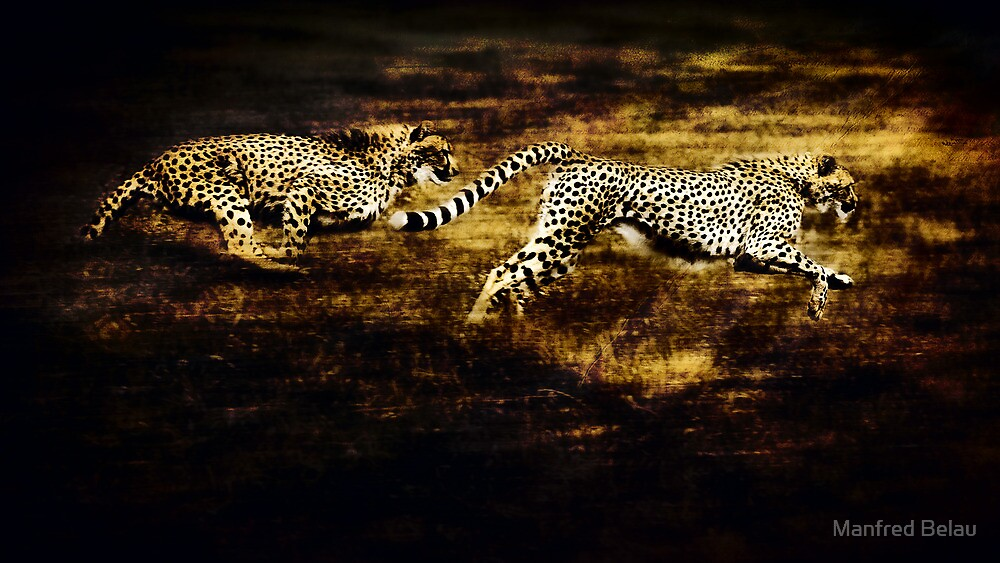 The Chase by Manfred Belau